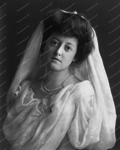 Victorian Bride Portrait Circa 1900s 8x10 Reprint Of Old Photo