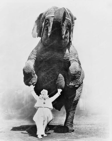 Huge Elephant Standing With Clown! 1930s 8x10 Reprint Of Old Photo