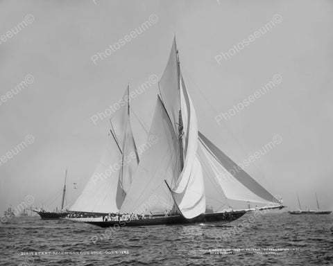 American Sailboat Cup Race 1890s 8x10 Reprint Of Old Photo