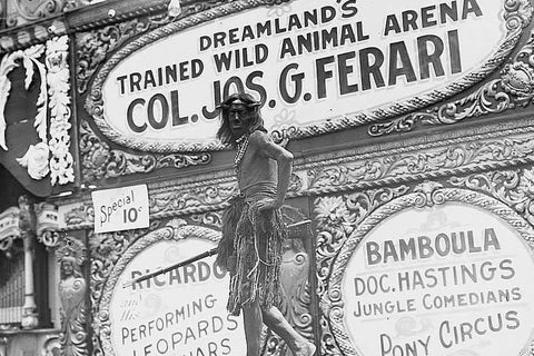 Coney Island Dreamland's Wild Animals 4x6 Reprint Of Old Photo