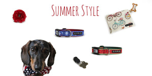 Summer Style for Dogs