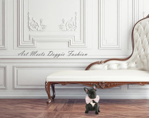 French Bulldog sitting in an elegant room wearing a unique dog bow tie collar