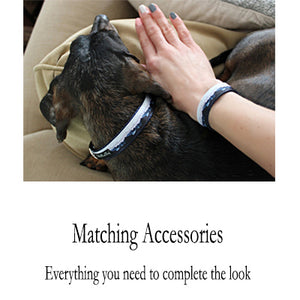 Matching Dog Collar BFF Bracelet shown with a dachshund wearing a matching dog collar