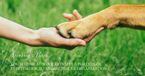 Woman's hand holding a dog's paw to represent how You Had Me at Woof gives back to animal rescue organizations