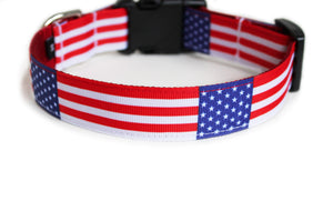 Backside of the dog collar, displaying the American flag pattern repeating itself along the collar