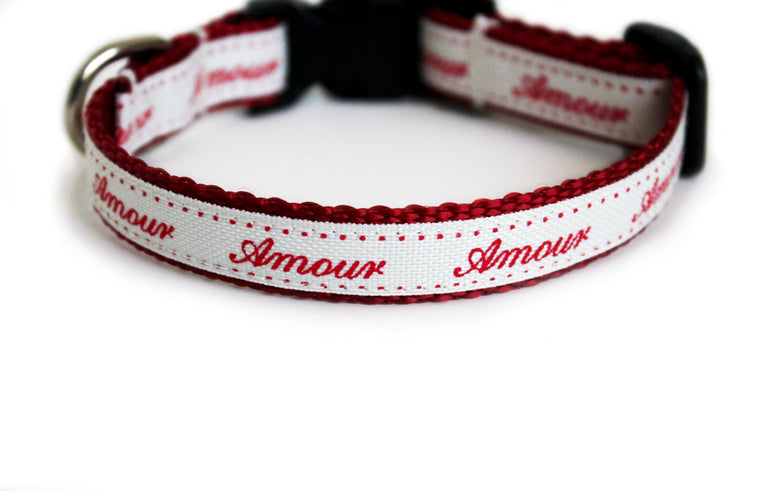 The Amour Dog Collar in cream with romantic script text in red that reads Amour.