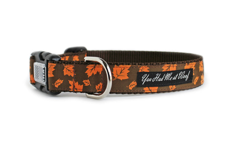 The Autumn Leaves Dog Collar in brown with orange falling leaves.