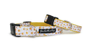 The Daisy Dog Collar with yellow webbing and small, photo-realistic daisies covering all of its trim.