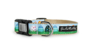 The Eggcellent Dog Collar with khaki webbing and trim that looks like real Easter eggs sitting in the grass with light blue sky above.