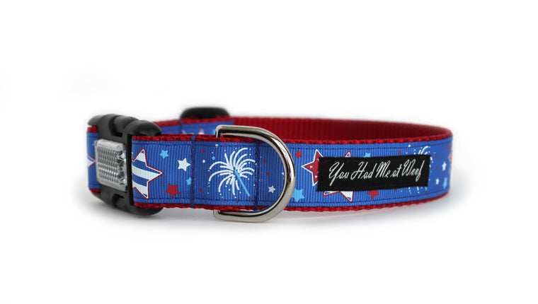 Fireworks Dog Collar