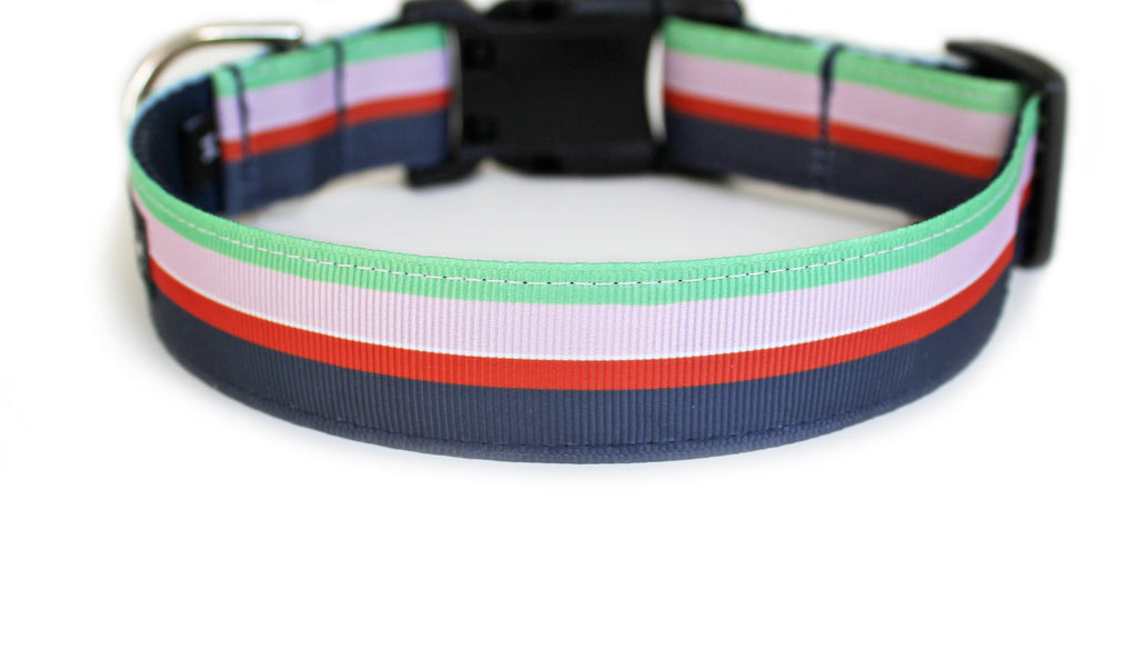 The back of Flower Shop Stripe Dog Collar, displaying the pattern repeating itself along the length of the collar.