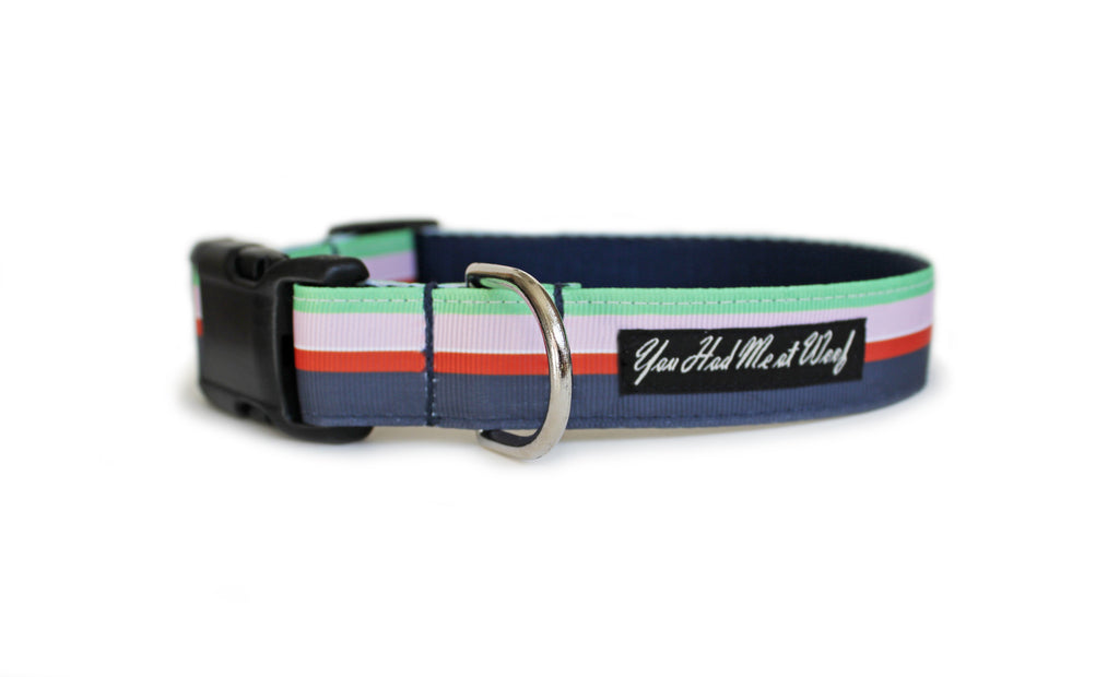 The Flower Shop Stripe Dog Collar with navy blue webbing and mint, light pink, orange-red, and navy blue striped trim.