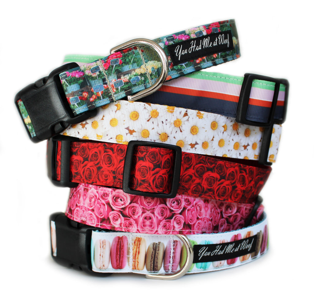 The French Flower Shop Collection of dog collars, including the French Flower Shop, Flower Shop Stripe, Daisy, Red Roses, Pink Roses, and Macaroons Dog Collars.