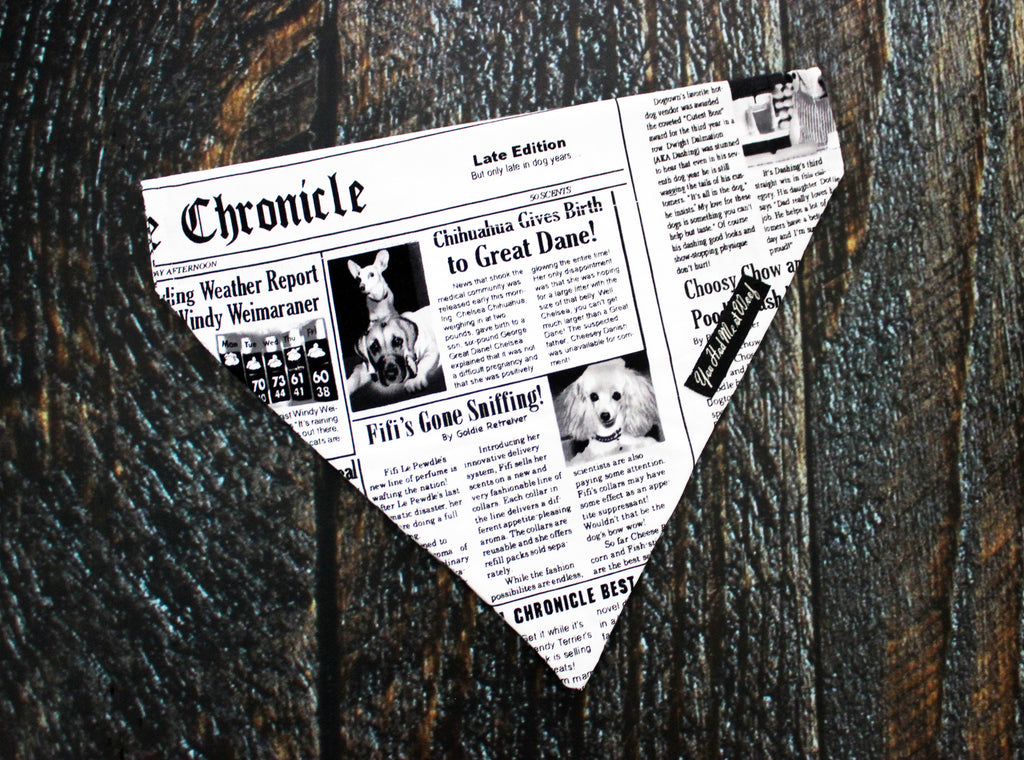 The Funny Newspaper Dog Bandana in white with funny dog news stories in black print.