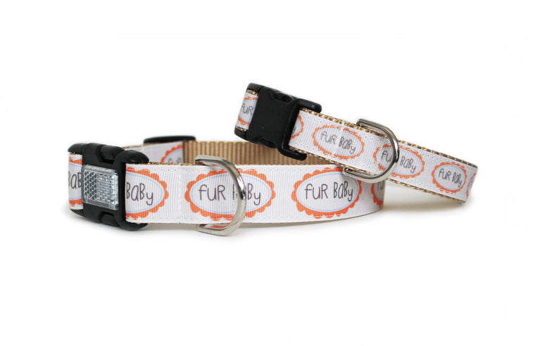 The Fur Baby Dog Collar in cream withthe text, Fur Baby, in a playful font surrounded by a cute scalloped border in orange and light blue.