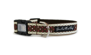 The Gingerbread Cutie Dog Collar in all brown with detailing that looks like laced frosting along the edges and red and pink dots in between.