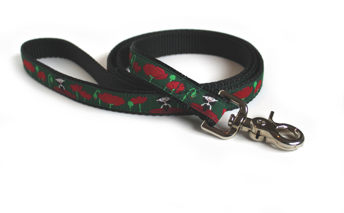 Dog Leash to Match Your Collar - 6 Foot Length