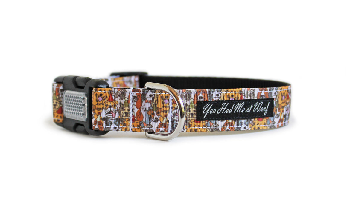 Group Photo Dog Collar