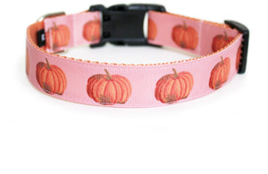 The back of the Harvest Pumpkin Dog Collar in rose tan, showing the pattern repeating along the collar.