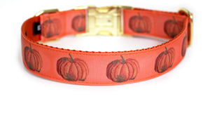 The back of the Harvest Pumpkin Dog Collar in orange, showing the pattern repeating along the collar.