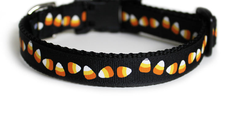 Itty Bitty Candy Corn Dog Collar