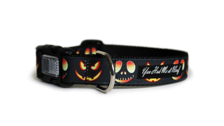 Jack O Lanterns Dog Collar