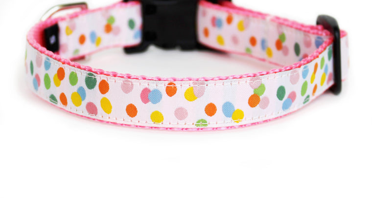 The Jelly Beans Dog Collar in white trim with scattered little jelly beans in pastel colors.