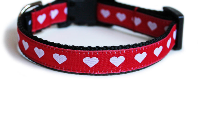 Lovely Hearts Dog Collar