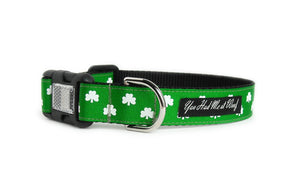 The Luck of the Irish Dog Collar in kelly green with two rows of little white shamrocks.