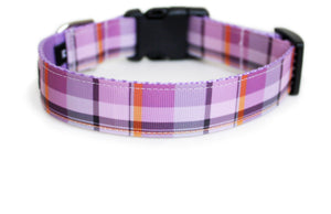 The back of the Plaid Fall Dog Collar, showing the pattern repeating along the length of the collar.