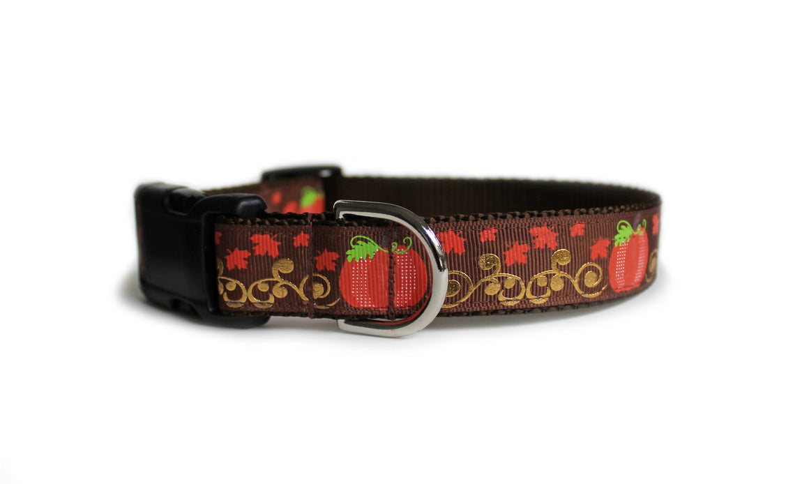 Pumpkins Dog Collar