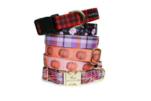 Six dog collars in the Pumpkins and Spice Fall Dog Collar Collection, neatly stacked.
