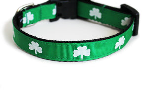 Shamrocks Dog Collar