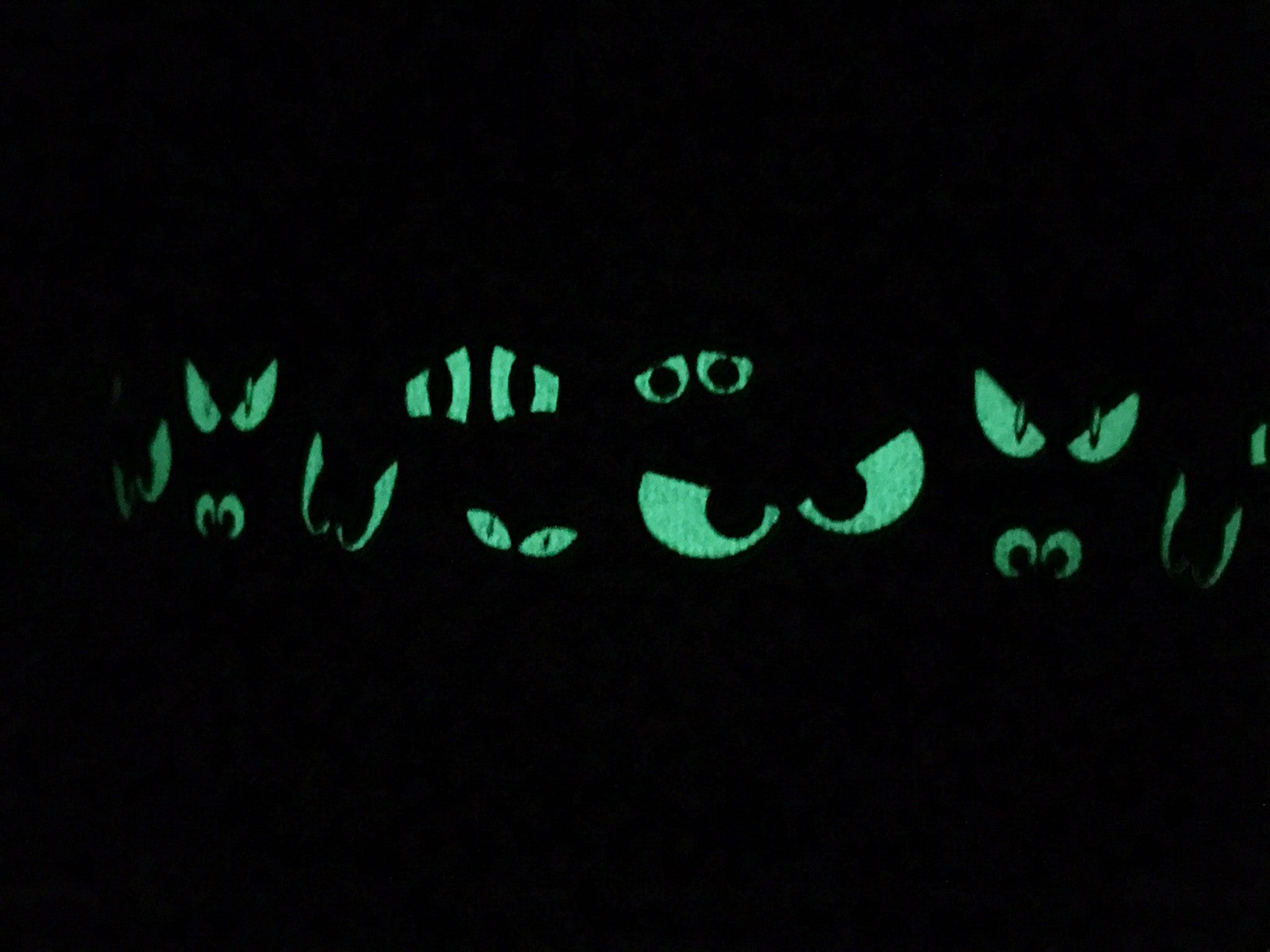 Spooky Eyes Halloween Dog Collar Glow In The Dark You Had Me At Woof