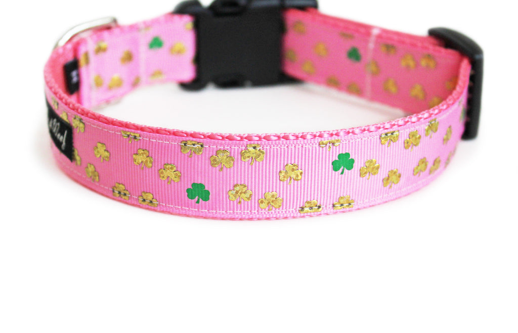 The back of the Golden Shamrocks Dog Collar, displaying the pattern repeating itself along the length of the collar.
