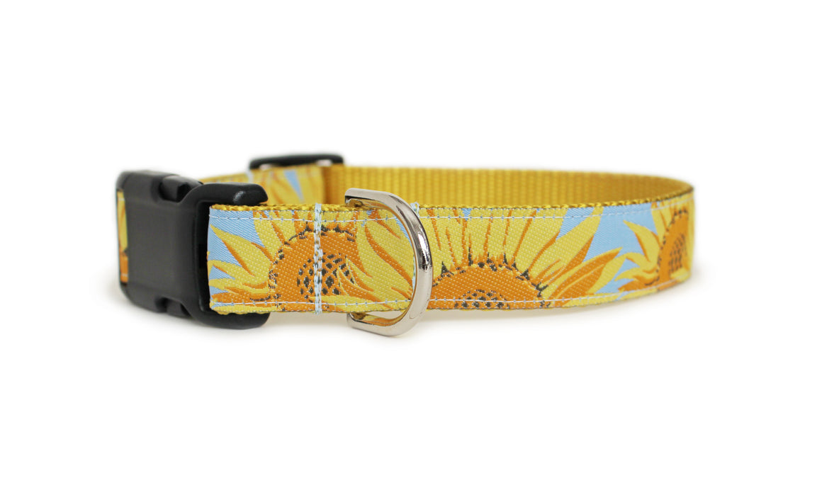 Sunflowers Dog Collar