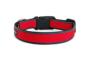 Sweet Boy Dog Collar