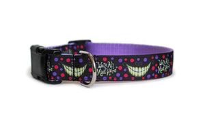 We're All Mad Here Dog Collar in black with purple and pink polka dogs, the Cheshire Cat's smile and the text, We're All Mad Here