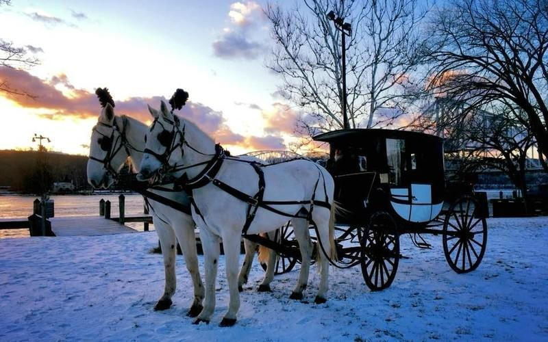 Take An Old Fashioned Winter Sleigh Ride At This CT Farm