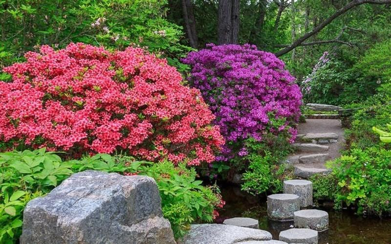 Find Your Zen At This Gorgeous Japanese Garden In Maine