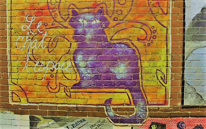 There Is A Public Art Gallery Devoted To Cats In This NH Alleyway