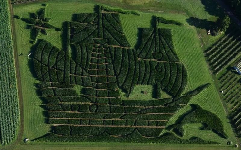 This Maine Corn Maze Was Just Named The Best In The Country