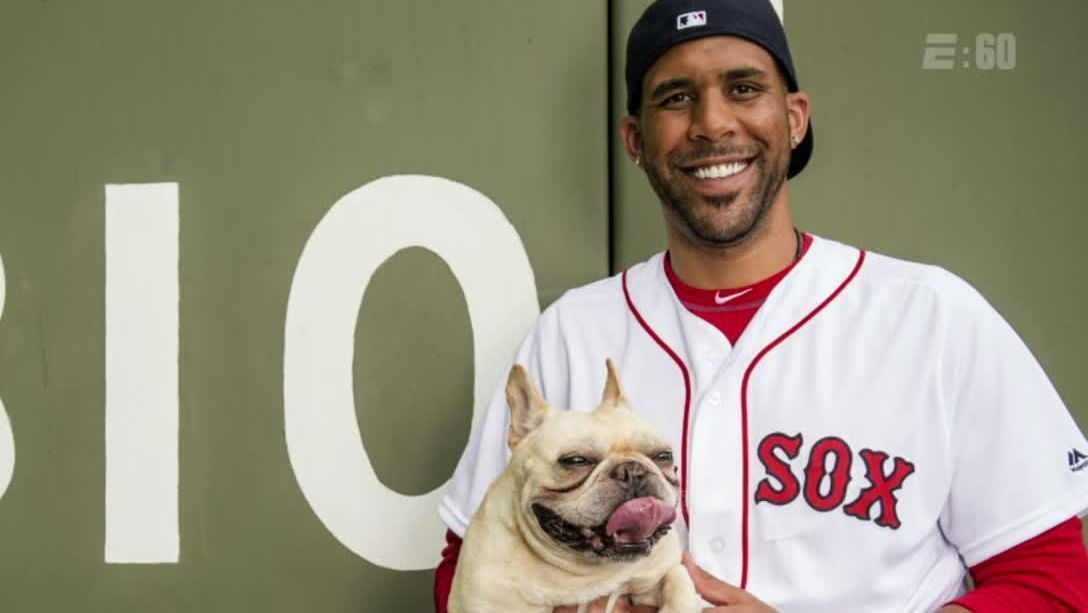 David Price's dog Astro passes away