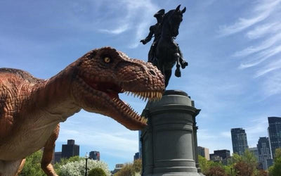 Visit Boston's Own Jurassic Park At The Franklin Park Zoo