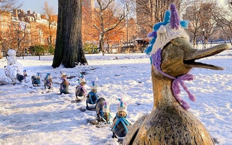 Boston Knitwear Company Outfits Duckling Statues With Unicorn Beanies