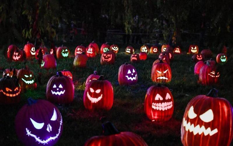 View 5,000 Illuminated Pumpkins At The Franklin Park Zoo This Fall