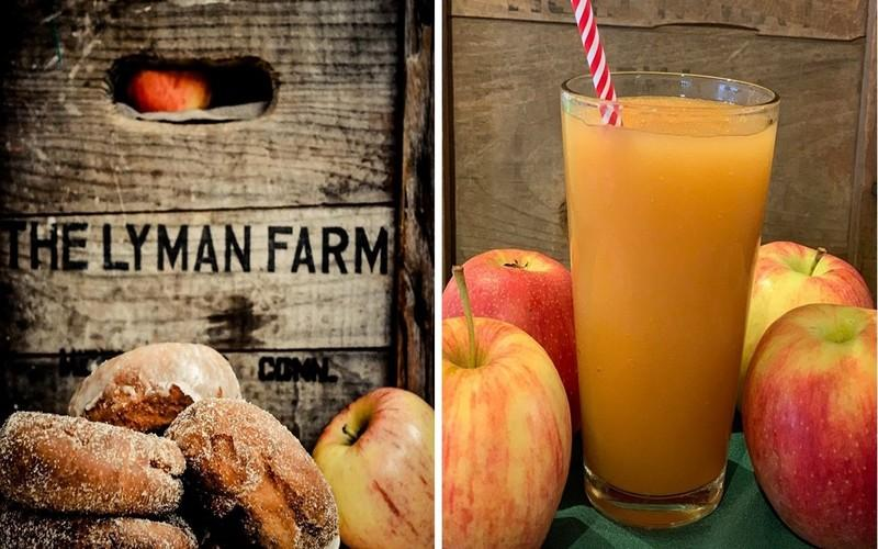 Connecticut's Favorite Orchard Just Added Fresh Apple Cider Slushies To Their Menu