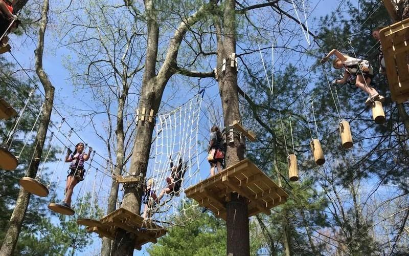 Close Out Your Summer With A Family-Friendly Treetop Adventure