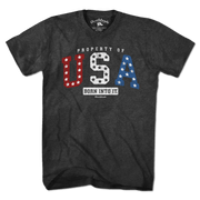 Property of USA T-Shirt - Chowdaheadz