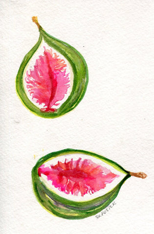 Figs Watercolor Painting Original, Fruit 4 x 6,  Fig great kitchen,dining, food art, fig illustration, fig painting, SharonFosterArt